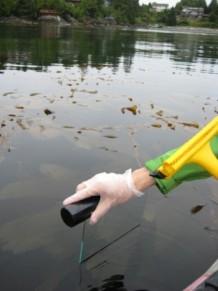 Sea surface microlayer sampling